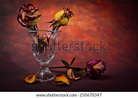 Glass vase with dry roses and petals fallen dry on a dark background - stock photo