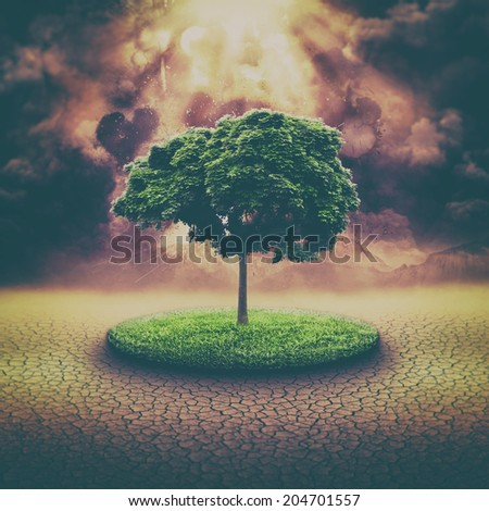 global disaster, abstract environmental backgrounds with explosion and alone tree - stock photo