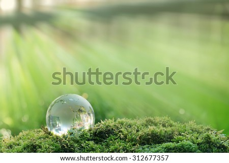 Globe model  from glass( Europe ) resting on the moss with a light green background. - stock photo