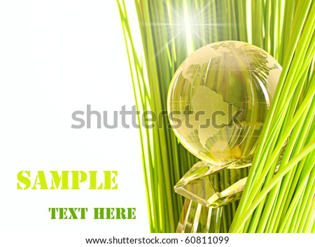 Globe on cristal hand in green grass. - stock photo