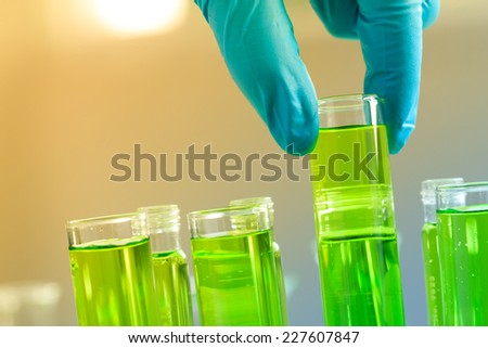 Gloved hand holding the test tubes in the laboratory - stock photo