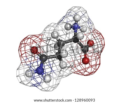 Glutamine (Gln, Q) amino acid, molecular model. Amino acids are the building blocks of all proteins. Atoms are represented as spheres with conventional color coding: hydrogen (white), etc - stock photo