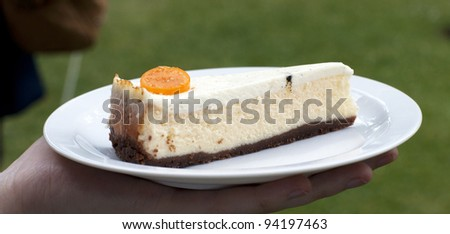 Goat cheese cheesecake with a topping of vanilla pod and soft cream - stock photo