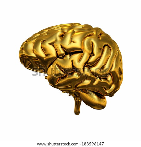 Gold brain isolated 2 - stock photo