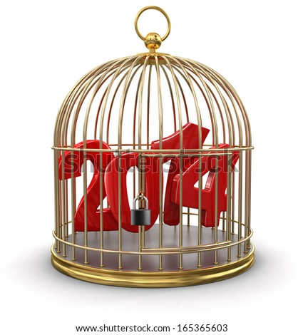 Gold Cage with 2014 (clipping path included) - stock photo
