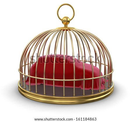 Gold Cage with Covering Car (clipping path included)	 - stock photo