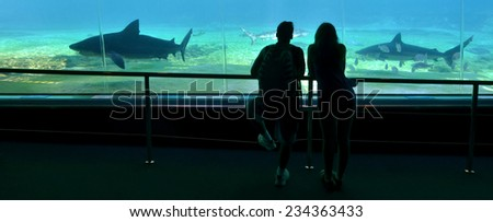 GOLD COAST, AUS -  NOV 06 2014:Couple visit at Sharks bay in Sea World Gold Coast Australia.It is the world's largest man-made lagoon system for sharks. - stock photo