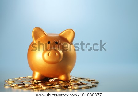 gold coin with with the piggy bank - stock photo
