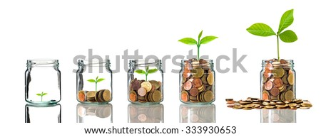 Gold coins and seed in clear bottle on white background,Business investment growth concept - stock photo