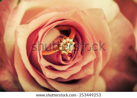 gold diamond engagement ring in beautiful rose flower, macro view - stock photo