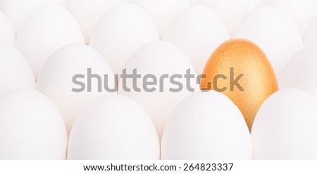 gold Easter egg between many white eggs on white background - stock photo