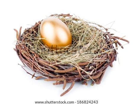Gold egg in nest from hay isolated on white - stock photo