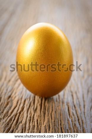 gold egg on wood - stock photo