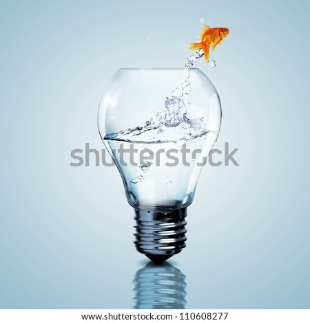 Gold fish in water inside an electric light bulb - stock photo
