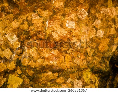 Gold leaves background texture - stock photo