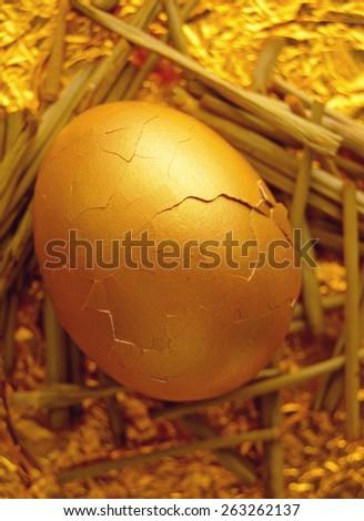 Gold nest egg hatching - stock photo