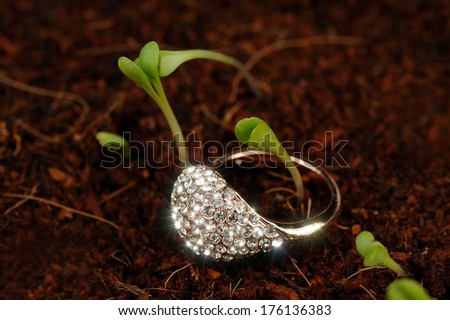 Gold Ring with Cubic Zirconia (CZ) on the Ground with Green Plants - stock photo