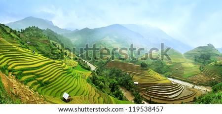 Gold terraced rice fields in Mu Cang Chai, Vietnam - stock photo