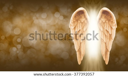 Golden Angel Wings on golden brown Bokeh Banner  - Wide golden brown bokeh background with a large pair of Angel Wings on the right side and a shaft of bright light between - stock photo