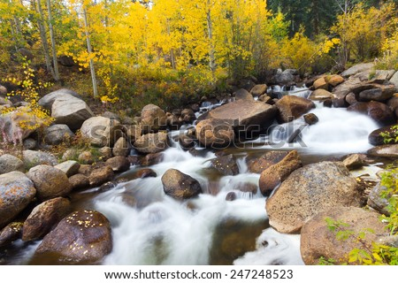 Golden aspen trees and mountain stream during Fall in Colorado - stock photo