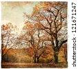 golden autumn - artistic landscape - stock photo