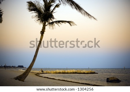 Golden Beach - stock photo