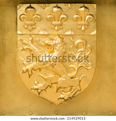 Golden Blazon, coat of arms of Lyon, with lions and flowers of lily, France - stock photo