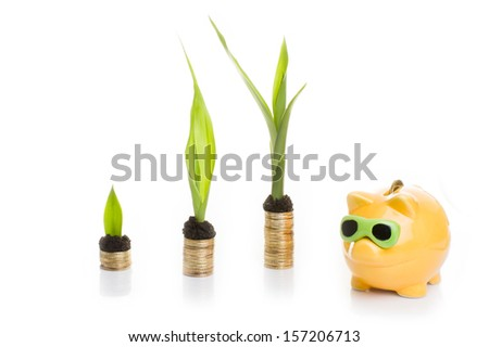 Golden coins with young plant and with piggy bank isolated. Money growth concept. - stock photo