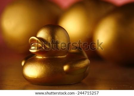 golden duckling and golden eggs - stock photo