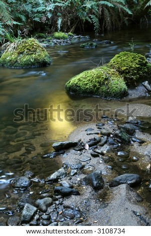 Golden early morning light on a rainforest river.  Victoria, Australia. - stock photo