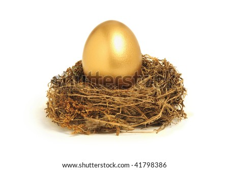 Golden egg in a nest representing retirement savings or security - stock photo