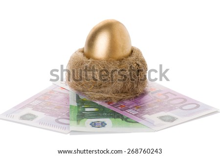 golden egg in a nest the euro isolated on white background - stock photo