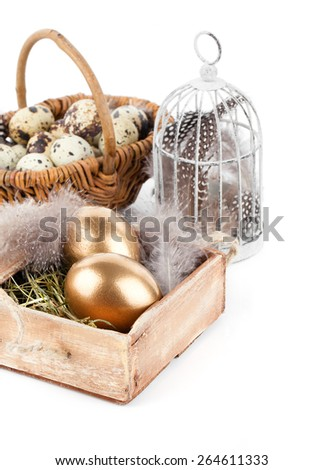golden egg in nest space for text, on white background - stock photo