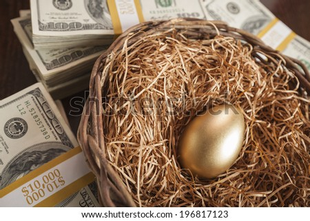 Golden Egg in Nest with Thousands of Dollars on Table. - stock photo
