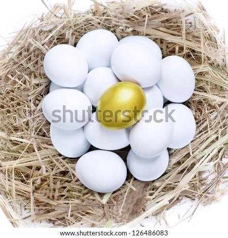 Golden egg on top of common white eggs inside a nest, isolated in white - stock photo