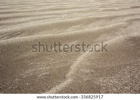 Golden flecks of sand across a sand dune - stock photo