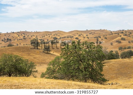 Golden Hills and Blue Sky - stock photo