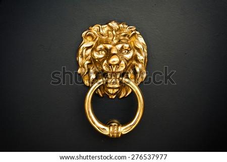 Golden Lion at the door - stock photo