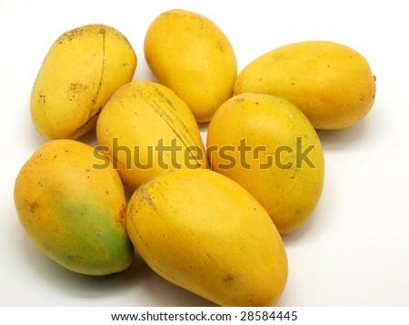 Golden mangoes on white background. - stock photo