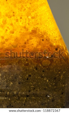 Golden mixture inside a glass bottle, Macro shot. Could be a salad dressing, could be a science project - stock photo