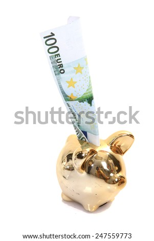 golden pig bank, family sucess, business concept - stock photo