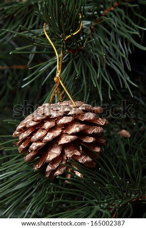 Golden pine cone with conifer on christmas tree - stock photo