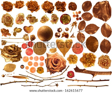 golden roses collection, with real roses, studio photographed in partially liquid gold, rose leaves and stalks, glittered shapes and textures, isolated on white, comes with clipping paths - stock photo