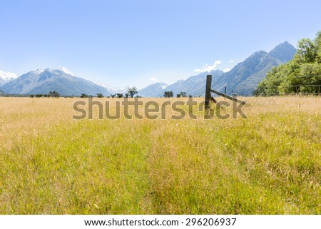 Golden summer grassland valley and surrounding Southern Alps on clear blue sky day, New Zealand. - stock photo