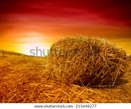 Golden sunset over farm field with hay bale - stock photo