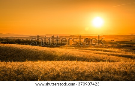 Golden sunset over tuscan fields in Italy - stock photo