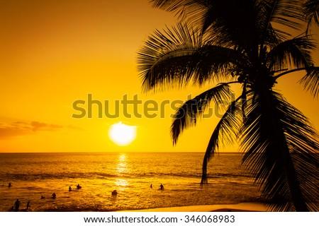 Golden tropical sunset - stock photo