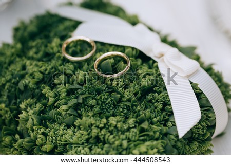 golden wedding rings on green moss, rustic style - stock photo