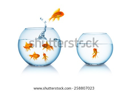 goldfish escapes in a fishbowl with his friend - stock photo