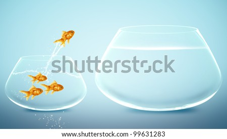 goldfish  jumping to Big bowl, Good Concept for new life, Big Opportunity, Ambition and challenge concept. - stock photo